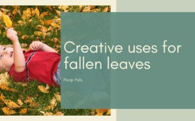 Creative uses for fallen leaves