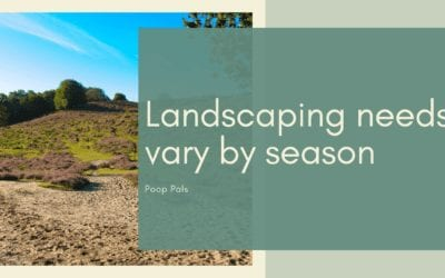 Landscaping needs vary by season